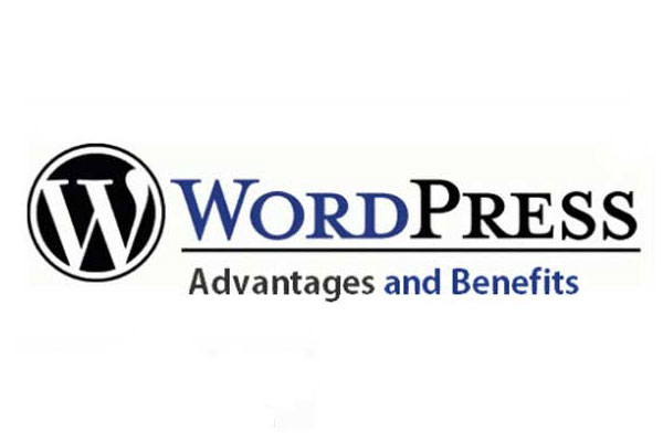 Why Real Estate Agents Should Learn WordPress